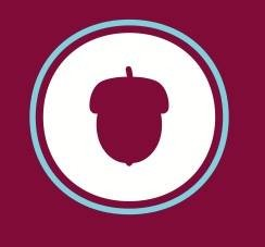 Acorn Yoga logo