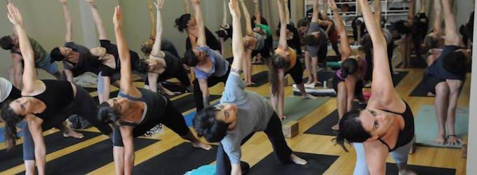 Jivamukti Yoga School NYC