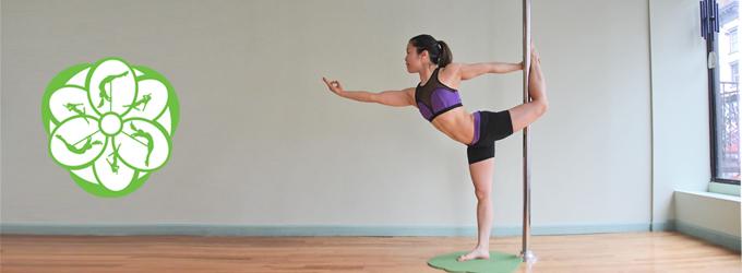 Yoga Pole
