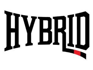 Hybrid Training logo