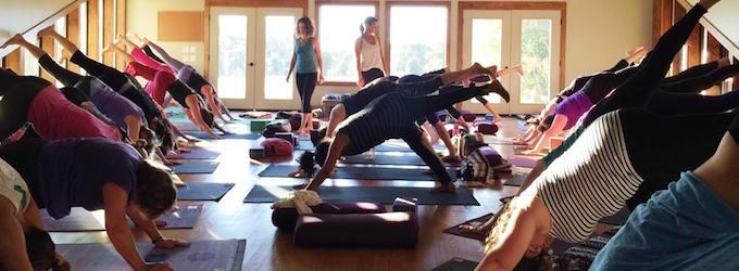 Yoga Yoga