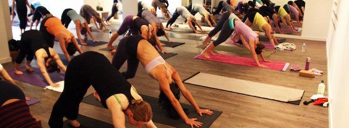 Australian Yoga Academy