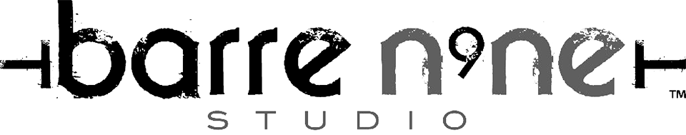 Barre N9NE logo