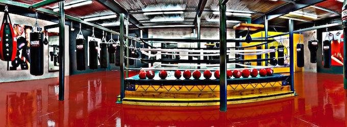 Punch Elite Fitness